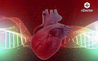 Xét nghiệm Gen di truyền theo panel bệnh học - Tim mạch (DNA_Wx)