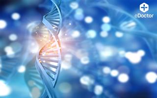 Xét nghiệm Di truyền tổng quát (DNA_WF)