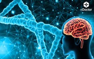 Xét nghiệm Gen di truyền theo panel bệnh học - Thần Kinh (DNA_Wx)